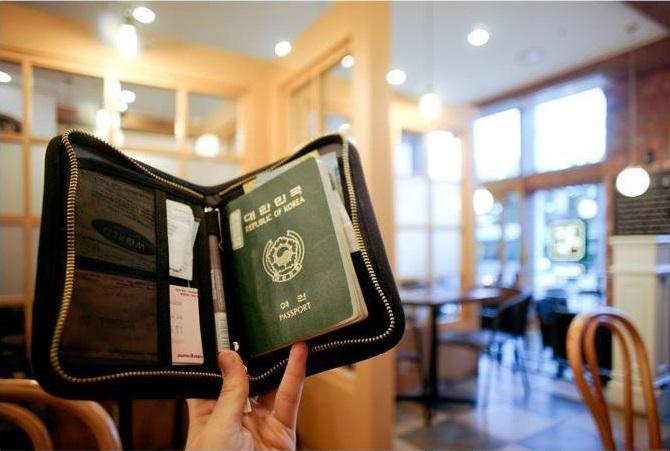 Passport Organizer Bag