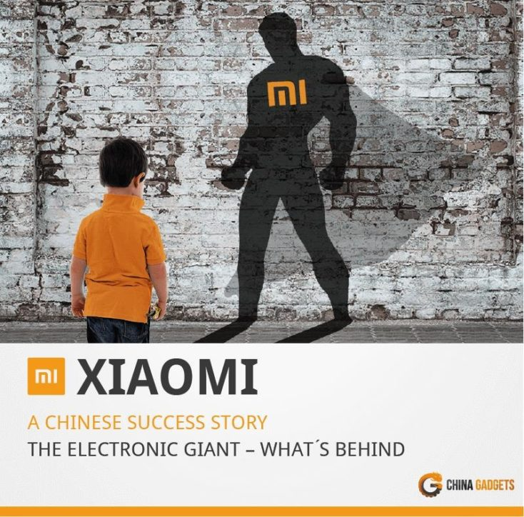 Xiaomi Infographic success story