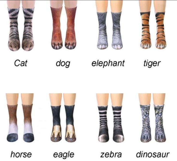 Animal socks motives