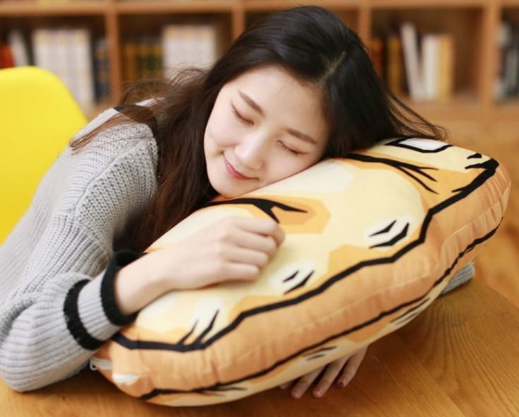 Gesture pillow sleep