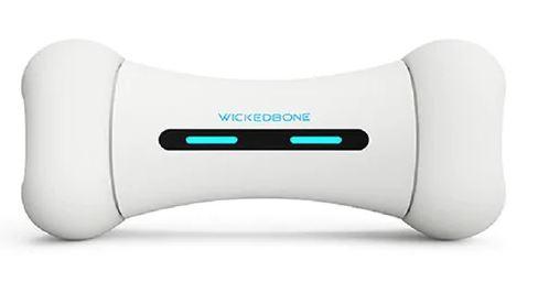 Wickedbone dog play bone