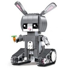 RC rabbit