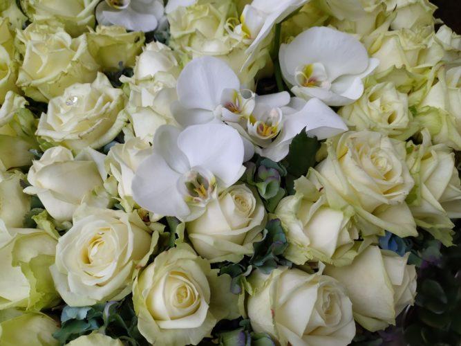 Redmi Note 8 Smartphone test photo main camera flowers
