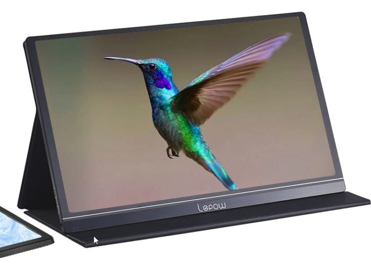 Lepow Portable Display 2020