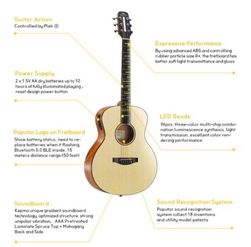 poputar guitar