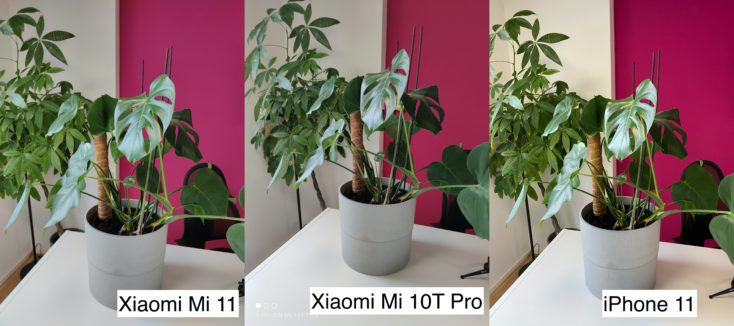 Xiaomi Mi 11 test photo main camera vs Mi 10T Pro vs iPhone 11